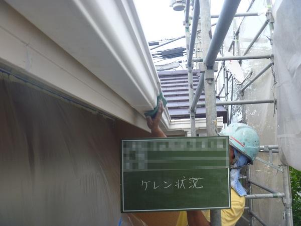 P1070139.JPG